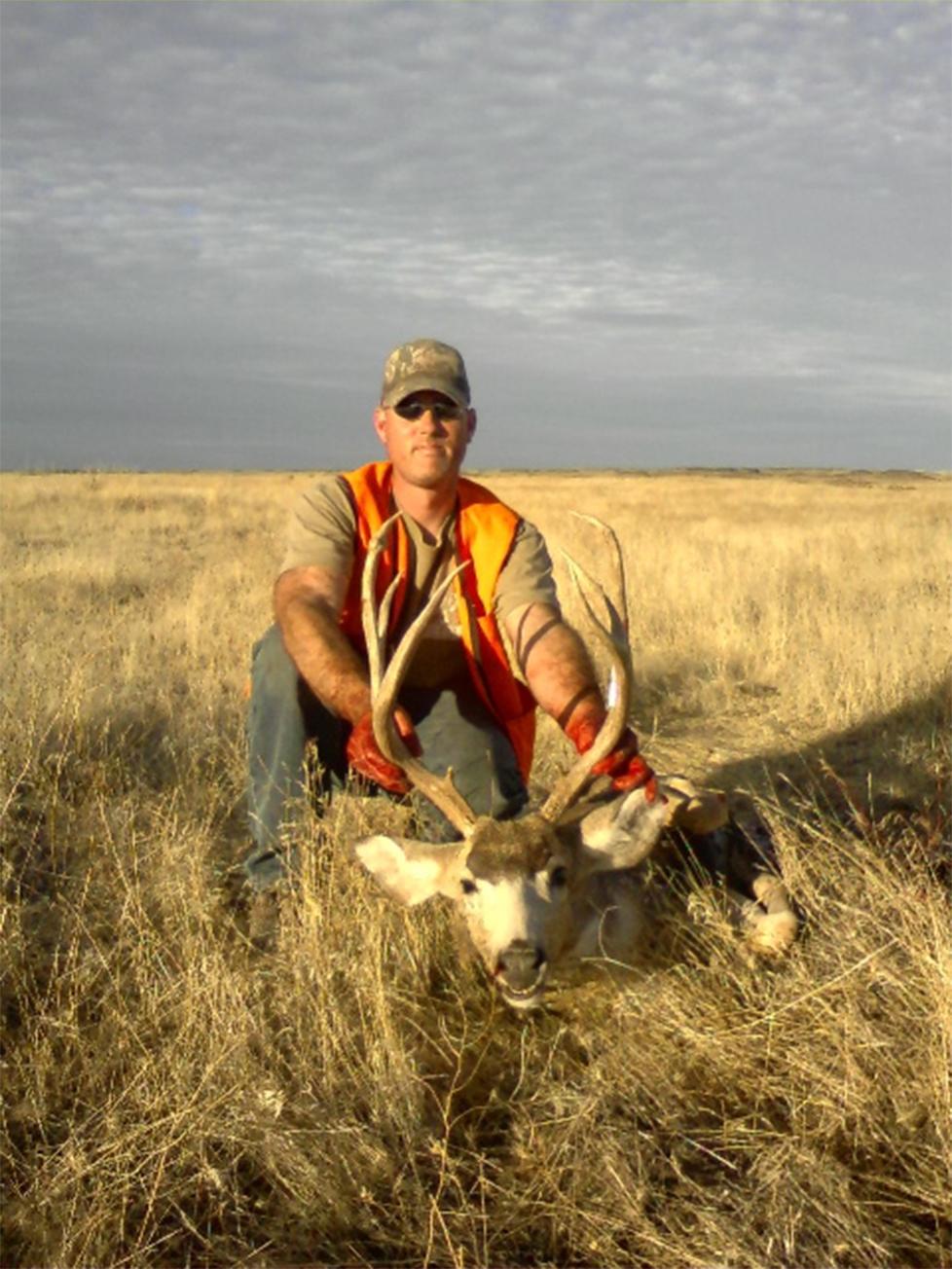 paul coon deer_crop